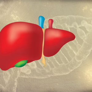 Arrowhead Completes Enrollment in Phase 1 Study for Treatment of Alpha-1 Liver Disease